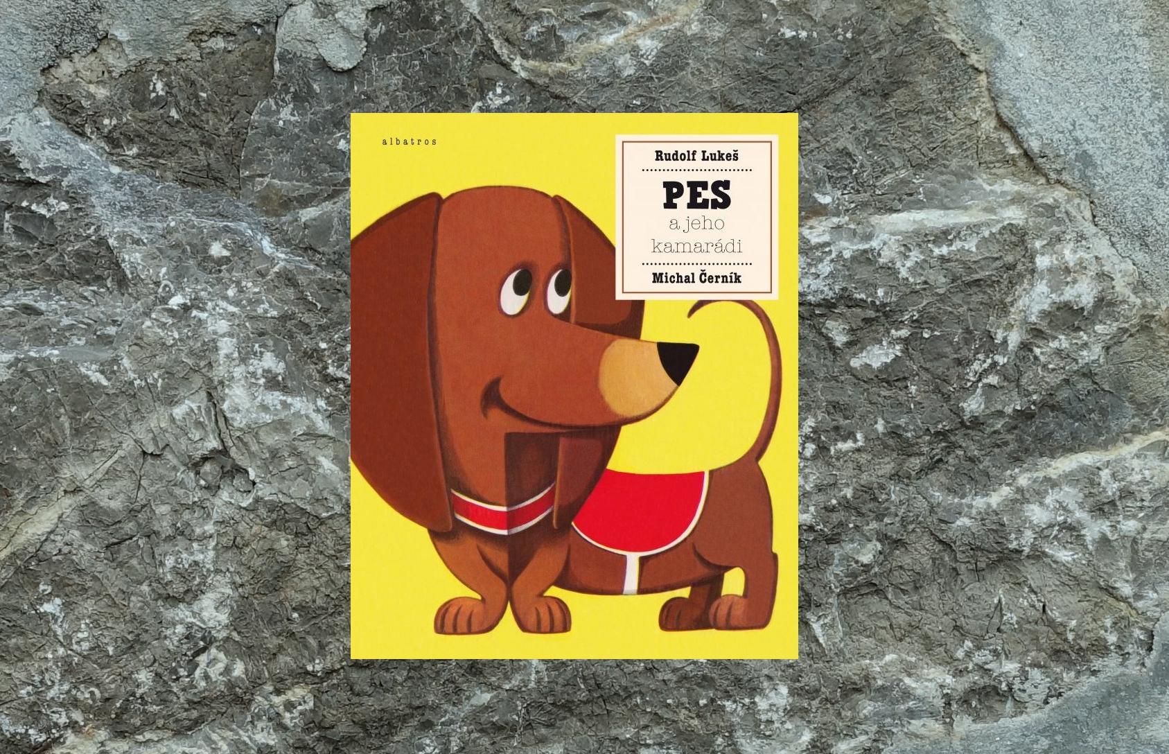 kniha pes a jeho kamarati