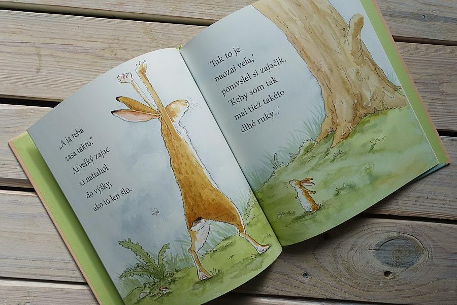 detska kniha